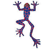 Funky Frog Wall Hanging 10 Inch Frog 3